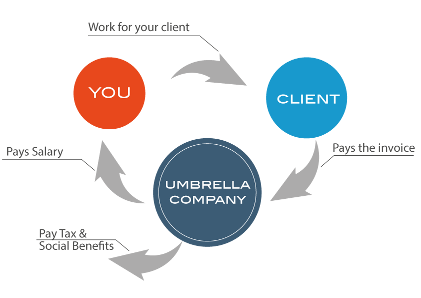 Flowchart-of-umbrella-employment